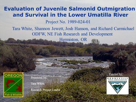 Evaluation of Juvenile Salmonid Outmigration and Survival in the Lower Umatilla River Project No. 1989-024-01 Tara White, Shannon Jewett, Josh Hanson,
