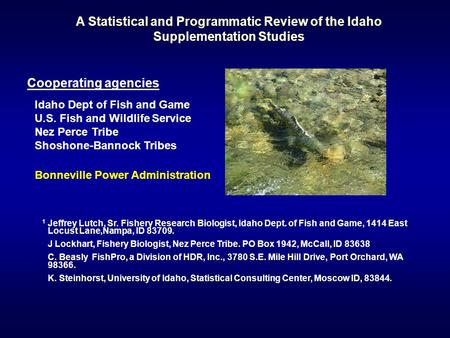 A Statistical and Programmatic Review of the Idaho Supplementation Studies 1 Jeffrey Lutch, Sr. Fishery Research Biologist, Idaho Dept. of Fish and Game,