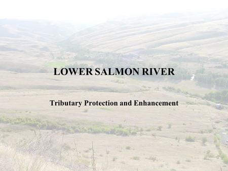 LOWER SALMON RIVER Tributary Protection and Enhancement.