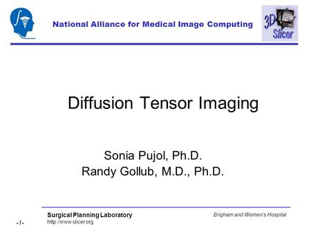 Surgical Planning Laboratory  -1- Brigham and Womens Hospital Diffusion Tensor Imaging Sonia Pujol, Ph.D. Randy Gollub, M.D., Ph.D.