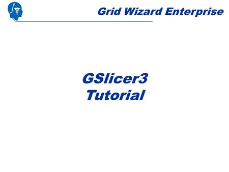 Grid Wizard Enterprise GSlicer3 Tutorial. Introduction This tutorial assumes you already completed the basic and advanced tutorial. GSlicer3 is a Slicer3.