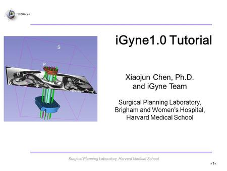-1- iGyne1.0 Tutorial Xiaojun Chen, Ph.D. and iGyne Team Surgical Planning Laboratory, Brigham and Women's Hospital, Harvard Medical School Surgical Planning.