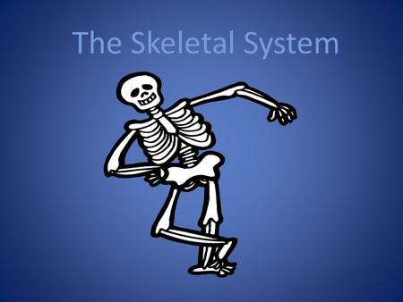 The Skeletal System. Your BONES Produce blood Protection Give shape. Help move Provide chemical storage.