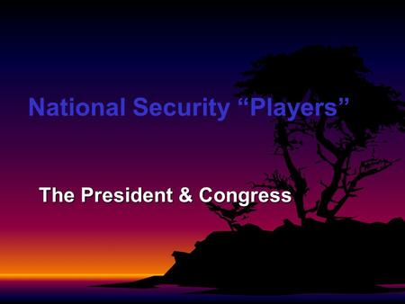 National Security Players The President & Congress.