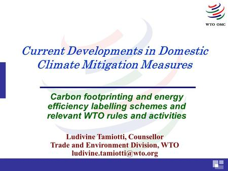 Current Developments in Domestic Climate Mitigation Measures Carbon footprinting and energy efficiency labelling schemes and relevant WTO rules and activities.