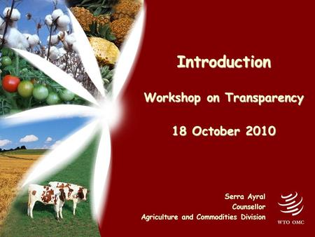 Introduction Workshop on Transparency 18 October 2010 Serra Ayral Counsellor Agriculture and Commodities Division.