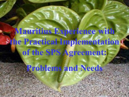 Mauritius Experience with the Practical Implementation of the SPS Agreement: Problems and Needs.