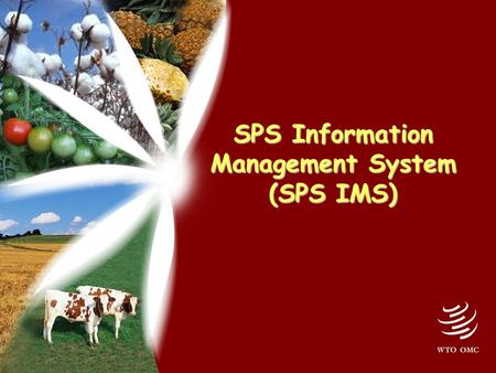 SPS Information Management System (SPS IMS). 2 Why SPS IMS? Since 1995 > 10,000 SPS notifications > 2,000 other SPS documents > 300 specific trade concerns.