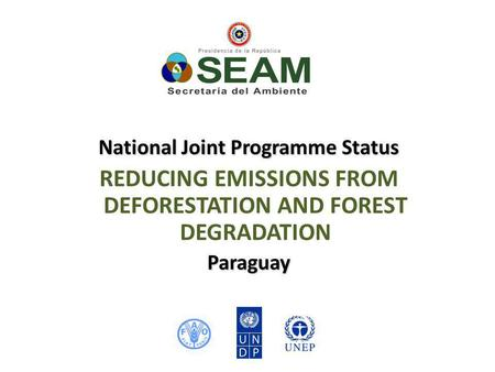 National Joint Programme Status REDUCING EMISSIONS FROM DEFORESTATION AND FOREST DEGRADATIONParaguay.
