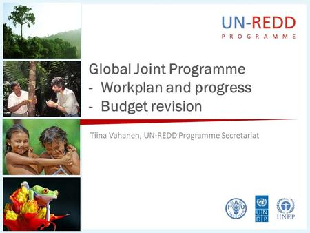 Global Joint Programme - Workplan and progress - Budget revision Tiina Vahanen, UN-REDD Programme Secretariat.
