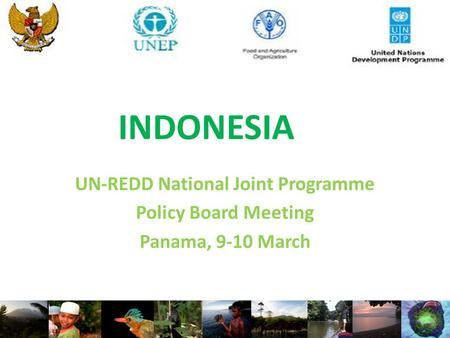 INDONESIA UN-REDD National Joint Programme Policy Board Meeting Panama, 9-10 March.