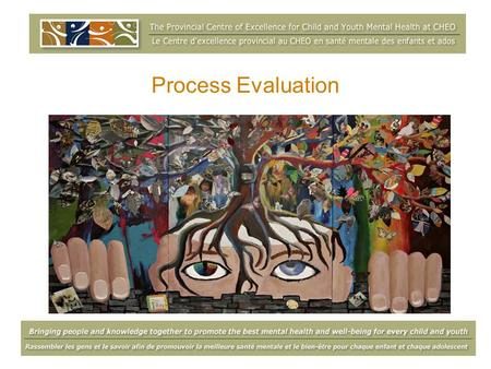 Process Evaluation Susan Kasprzak, March 13, 2009.