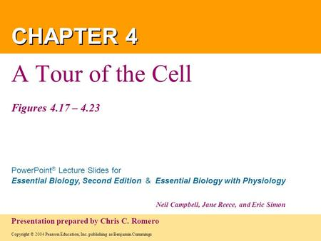 A Tour of the Cell Figures 4.17 – 4.23