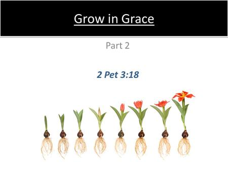 Grow in Grace Part 2 2 Pet 3:18. Doing things less because we feel like it, but more because it is right –2–2Cor 5:15 A greater desire to do His will.