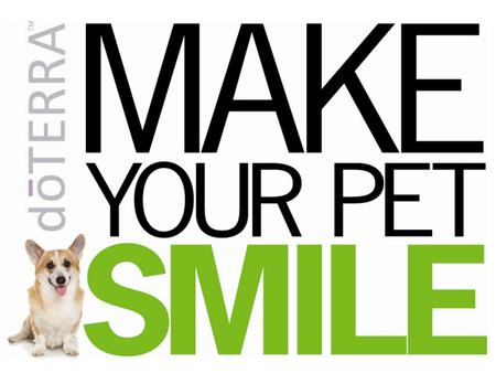 Your pet puts a smile on your face everyday, return the favor. Experience how dōTERRAs CPTG. Certified Pure Therapeutic Grade Essential Oils can calm,