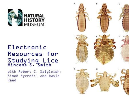 Electronic Resources for Studying Lice Vincent S. Smith with Robert C. Dalgleish, Simon Rycroft, and David Reed.