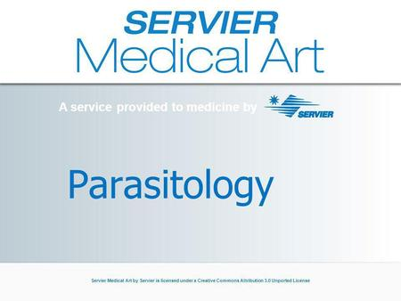 A service provided to medicine by Servier Medical Art by Servier is licensed under a Creative Commons Attribution 3.0 Unported License Parasitology A service.