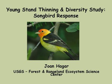 Young Stand Thinning & Diversity Study: Songbird Response Joan Hagar USGS – Forest & Rangeland Ecosystem Science Center.