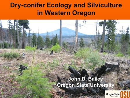 Dry-conifer Ecology and Silviculture in Western Oregon John D. Bailey Oregon State University.