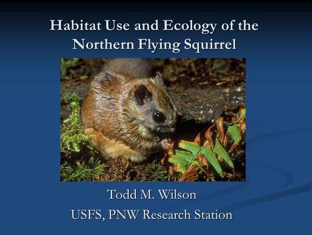 Habitat Use and Ecology of the Northern Flying Squirrel Todd M. Wilson USFS, PNW Research Station.