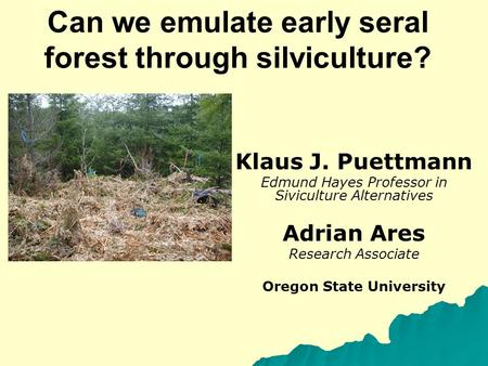 Can we emulate early seral forest through silviculture? Klaus J. Puettmann Edmund Hayes Professor in Siviculture Alternatives Adrian Ares Research Associate.