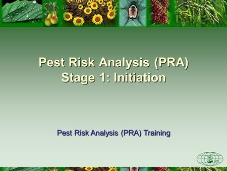 Pest Risk Analysis (PRA) Stage 1: Initiation Pest Risk Analysis (PRA) Training.
