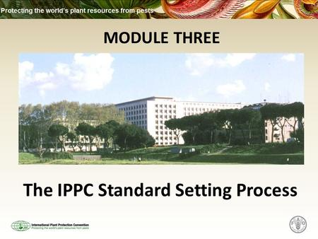 MODULE THREE The IPPC Standard Setting Process. What this Module Covers The 4 stages of the IPPC Standard Setting Process:
