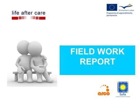 FIELD WORK REPORT. WHERE Field work carried out in Carpi (70.000) and Cesena (90.000) – same methodology.