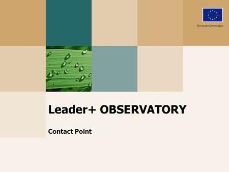 Leader+ OBSERVATORY Contact Point European Commission.