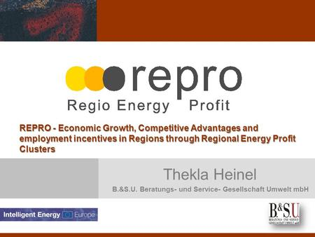 Thekla Heinel B.&S.U. Beratungs- und Service- Gesellschaft Umwelt mbH REPRO - Economic Growth, Competitive Advantages and employment incentives in Regions.