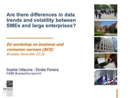 Sophie Villaume - Élodie Pereira INSEE, Business Surveys Unit Are there differences in data trends and volatility between SMEs and large enterprises? EU.