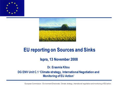 European Commission: Environment Directorate: Climate strategy, international negotiation and monitoring of EU action EU reporting on Sources and Sinks.