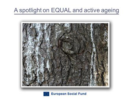 European Social Fund A spotlight on EQUAL and active ageing.