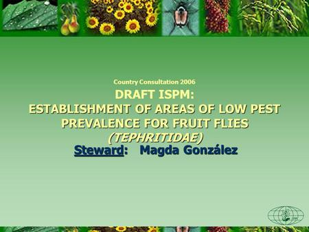 ESTABLISHMENT OF AREAS OF LOW PEST PREVALENCE FOR FRUIT FLIES (TEPHRITIDAE) Country Consultation 2006 DRAFT ISPM: ESTABLISHMENT OF AREAS OF LOW PEST PREVALENCE.