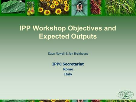 IPP Workshop Objectives and Expected Outputs Dave Nowell & Jan Breithaupt IPPC Secretariat Rome Italy.