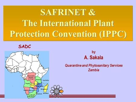 By A. Sakala Quarantine and Phytosanitary Services Zambia SAFRINET & The International Plant Protection Convention (IPPC) SAFRINET & The International.