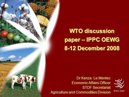 WTO discussion paper – IPPC OEWG 8-12 December 2008 Dr Kenza Le Mentec Economic Affairs Officer STDF Secretariat Agriculture and Commodities Division.