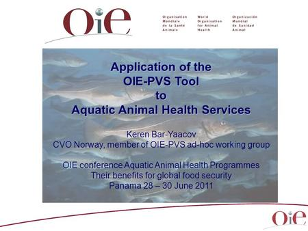 Application of the OIE-PVS Tool to Aquatic Animal Health Services Keren Bar-Yaacov CVO Norway, member of OIE-PVS ad-hoc working group OIE conference Aquatic.