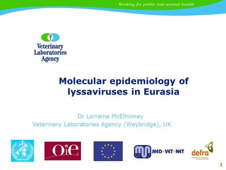 1 Molecular epidemiology of lyssaviruses in Eurasia Dr Lorraine McElhinney Veterinary Laboratories Agency (Weybridge), UK.