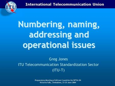 International Telecommunication Union Preparatory Meeting of African Countries for WTSA-04 Victoria Falls, Zimbabwe, 23-25 June 2004 Numbering, naming,