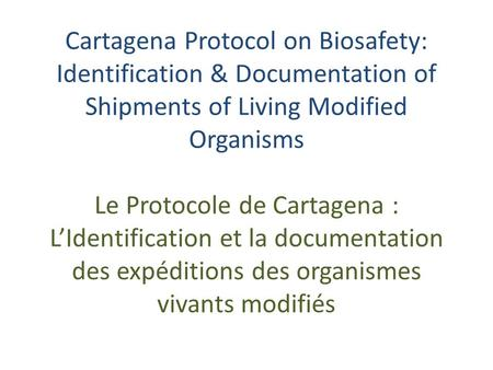Cartagena Protocol on Biosafety: Identification & Documentation of Shipments of Living Modified Organisms Le Protocole de Cartagena : LIdentification et.