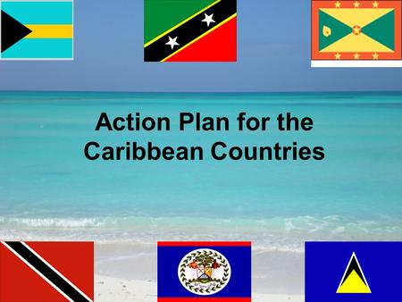 Action Plan for the Caribbean Countries. Current Situation Lack of the technical expertise required in the identification and documentation of LMOs.