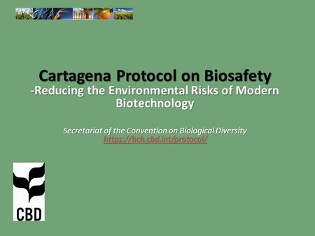 Cartagena Protocol on Biosafety -Reducing the Environmental Risks of Modern Biotechnology Secretariat of the Convention on Biological Diversity https://bch.cbd.int/protocol/