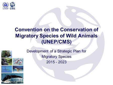 Convention on the Conservation of Migratory Species of Wild Animals (UNEP/CMS) Development of a Strategic Plan for Migratory Species 2015 - 2023.