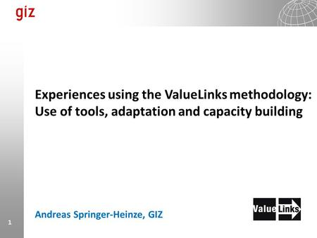 Experiences using the ValueLinks methodology: