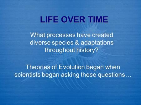 LIFE OVER TIME What processes have created diverse species & adaptations throughout history? Theories of Evolution began when scientists began asking these.