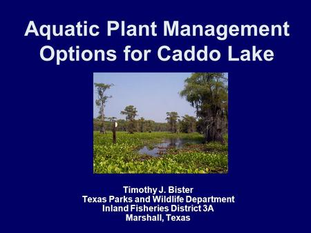 Aquatic Plant Management Options for Caddo Lake Timothy J. Bister Texas Parks and Wildlife Department Inland Fisheries District 3A Marshall, Texas.