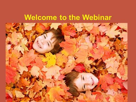 Welcome to the Webinar. Guidance for Restructuring Broad Strokes ISBE Fall 2009.
