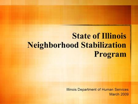 State of Illinois Neighborhood Stabilization Program Illinois Department of Human Services March 2009.