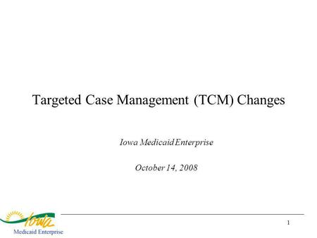 1 Targeted Case Management (TCM) Changes Iowa Medicaid Enterprise October 14, 2008.